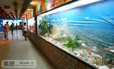 幼儿园秋天海底世界主题墙图片